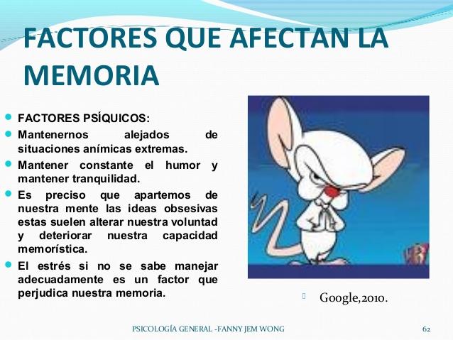 la-memoria-62-638